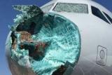 Пилоты посадили самолет сломал нос