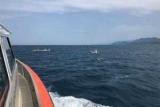 Десять россиян срывалась в море в Черногории